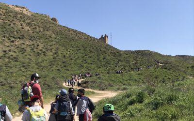 Excursión a los Cerros de Alcalá